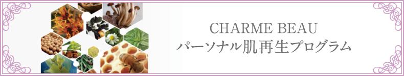 CHARME BEAU パーソナル肌再生プログラム